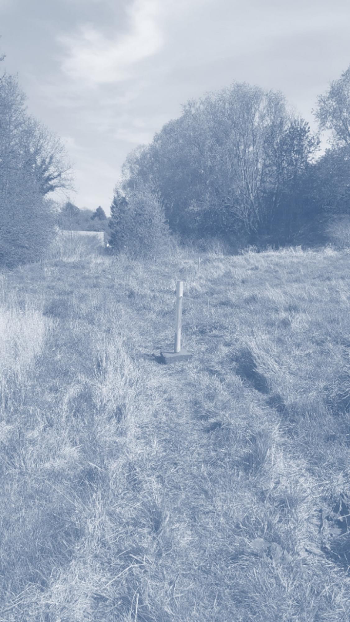 site Danone